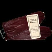 """SOLD Guibert Freres """"Edelweiss"""" Gloves- Paris Size 6 3/4, Mint"""
