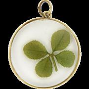 9K Gold Rimmed Lucky Four Leaf Clover Pendant