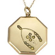 Edwardian 9K Gold & Silver 'Good Luck' Locket & Chain