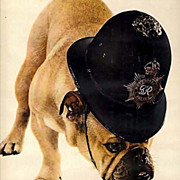 SOLD 1960 'Friskies Dog Food' Carnation Advertisement, Bull Dog, Metropolitan Police Hat, RARE