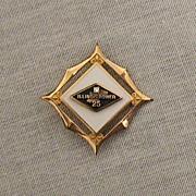 SALE 50% OFF~Vintage Diamond 10K Gold Filled Award Brooch/Pin Fleur de lis~Illinois Power 25 Y