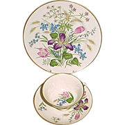 Franciscan Fine China Iris Decorated Cup, Saucer, and Dessert Plate - Mariposa