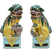 Very Fine PAIR of Chinese Foo Dogs Hand Painted