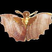 Darling Shell Winged Moth Pin