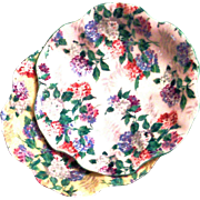 Vintage Shelley Bone China Chintz Floral Design Pin Plate