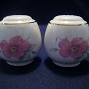 SALE Homer Laughlin Wild Pink Rose Salt and Pepper Shakers
