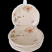 "Set of 8 Mikasa ""Oriental Poppy"" Salad Plates"