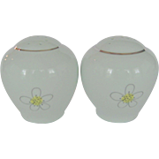 Green Ball Salt and Pepper Shakers With Daisies