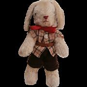 Harry Vintage Bunny Rabbit