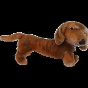 Steiff Hexie Dachshund Dog 1965 to 1974, No Id's