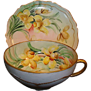 SALE Cheerful Austrian Porcelain Cup and Saucer Set ~ Hand Painted with Yellow Daffodils ~ OEG