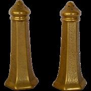SALE Elegant Gold Embossed Porcelain Salt & Pepper Set ~ Hand Painted with AOG Grounded Design