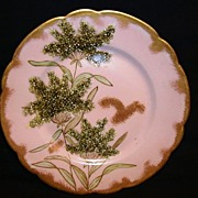 SALE Fantastic Limoges Porcelain Cabinet Plate ~ Hand Painted with Queen Ann's Lace ~ 1876 -