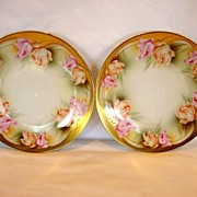 SALE (2)  ~ RS Prussia Porcelain Plates-Pair ~ Factory Decorated with Parrot Tulips ~ ...
