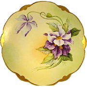 SALE Gorgeous Bavarian Porcelain Plate ~ Hand Painted with Purple and White Clematis ~ Pickard