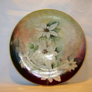 SALE Awesome Austrian Porcelain Cabinet Plate~ Hand Painted with White Poinsettias ~ ALTROHLAU