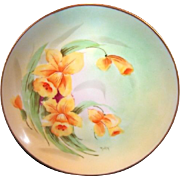 SALE Gorgeous Porcelain Cabinet Plate by PICKARD Studios ~signed by Harry E. Tolley ~ Daffodil