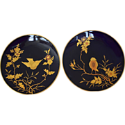 SALE 2 Gorgeous Cabinet Plates ~ Cobalt with Raised Gold Paste Birds ~ Fischer & Meig ...