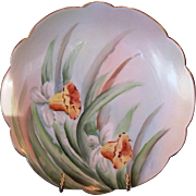 SALE Wonderful Limoges Porcelain Plate with Hand Painted Yellow Daffodils – Limoges France .