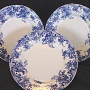 SALE ( 3 ) Wonderful Old English Blue & White Earthenware Plates~ Trellis Pattern ~ W Adams &