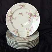 SALE Seven (7) Limoges Porcelain Dinner Plates ~ Pinkish Purple Flowers ~ Haviland Limoges 188