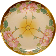 SALE STOUFFER Decorated ~ Limoges Porcelain ~ Art Nouveau ~ Hand Painted with Pink Wild ...