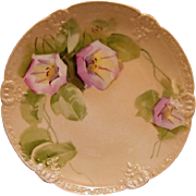 SALE Eye Appealing Limoges Porcelain Cabinet Plate ~ Hand Painted with Pink and White Morning
