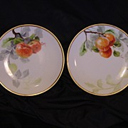 "Two (2) Beautiful Limoges Porcelain Plates ~ Hand Painted with Fruit by Artist "" Luc "" ~ L"