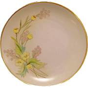 SALE Beautiful Pickard / Rosenthal Bavarian Porcelain Cabinet Plate ~ Hand Painted with Yellow