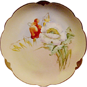 "SALE Wonderful Bavarian Porcelain Cabinet Plate ~ Hand Painted by Pickard Artist ""Florence ."