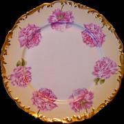 SALE Attractive Limoges Porcelain Cabinet Plate ~ Hand Painted with Pink Roses ~ T & V Tressem