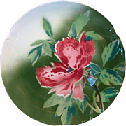 """SALE Colorful French Faience Cabinet Plate 10 1/2""""  ~  Red Poppies ~ Gien France 1920's"""