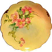 """SALE Amazing Bavarian Porcelain Cabinet Plate ~ Hand Painted by Pickard Artist  """" Florence J"""