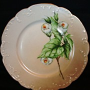 SALE Beautiful Old Limoges Porcelain Cabinet Plate ~ Hand Painted with White Flowers ~ Havilan