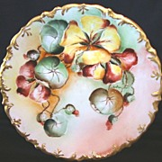 SALE Gorgeous Limoges Porcelain Cabinet Plate ~ Hand Painted with Colorful Nasturtiums ~ R. ..