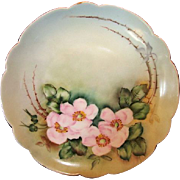SALE Exceptional Bavarian Porcelain Cabinet Plate ~ Hand Painted with Wild Pink Roses ~ Artist