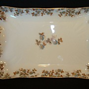 SALE Wonderful Old Haviland Limoges Platter ~ Factory Decorated with Blue Flowers and Brown Vi
