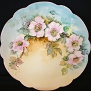 SALE Beautiful Limoges Porcelain Plate Hand Painted with Pink/White Wild Roses – Limoges ...