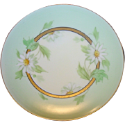 SALE Beautiful Pickard Decorated Porcelain Cabinet Plate ~ Hand Painted with White Daisies ~ A