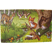 SOLD Post Card with Animals by Alfred Mainzer Artist Signed