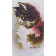 SALE Artist Signed Postcard Cat Unused Excellent Condition