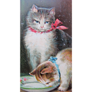 SALE Post Card of Cats for Birthday Greetings Tucks