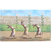SALE Easter Post Card Easter Lilies and Rabbits 1909 Germany \
