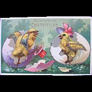SALE Easter Postcard with Dressed Chicks Fantasy Easter
