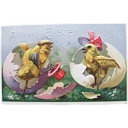 SALE Easter Post Card with Chicks in Hats Embossed Germany