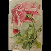 SALE Post Card of Roses by Catherine Klein Birthday Greetings Unused