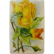 SALE Post Card of Yellow Roses Flowers by Catherine Klein