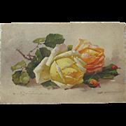 SALE Post Card Artist Signed Catherine Klein Unused