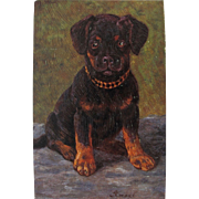 SALE Artist Signed Post Card of Puppy Dog Unused Germany