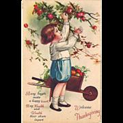 SOLD c1910 Thanksgiving postcard Ellen Clapsaddle Boy Picks Apples